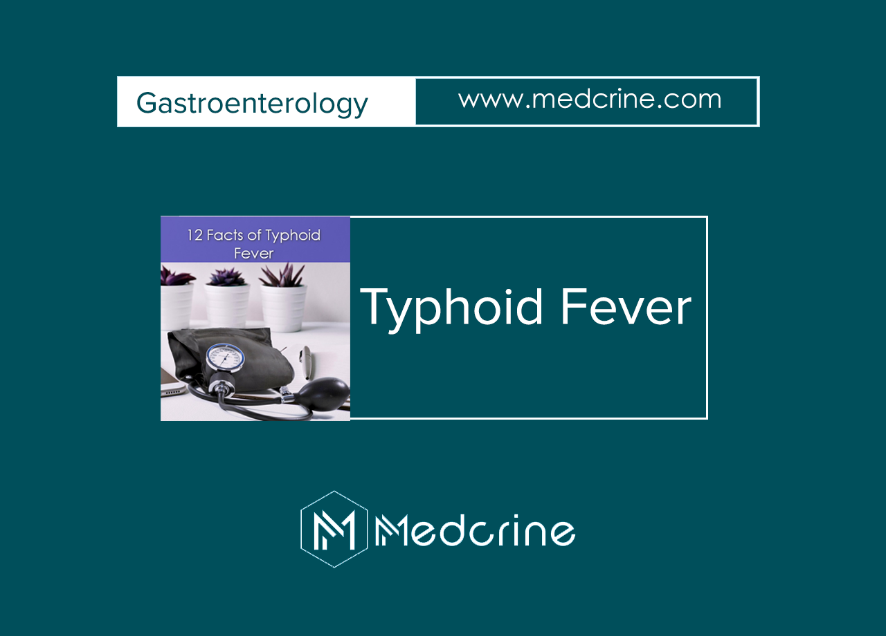 12 Facts about Typhoid Fever