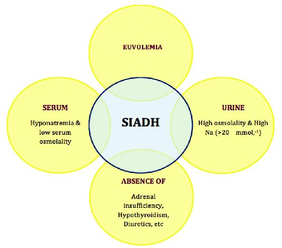 Syndrome of inappropriate antidiuretic hormone (SIADH)