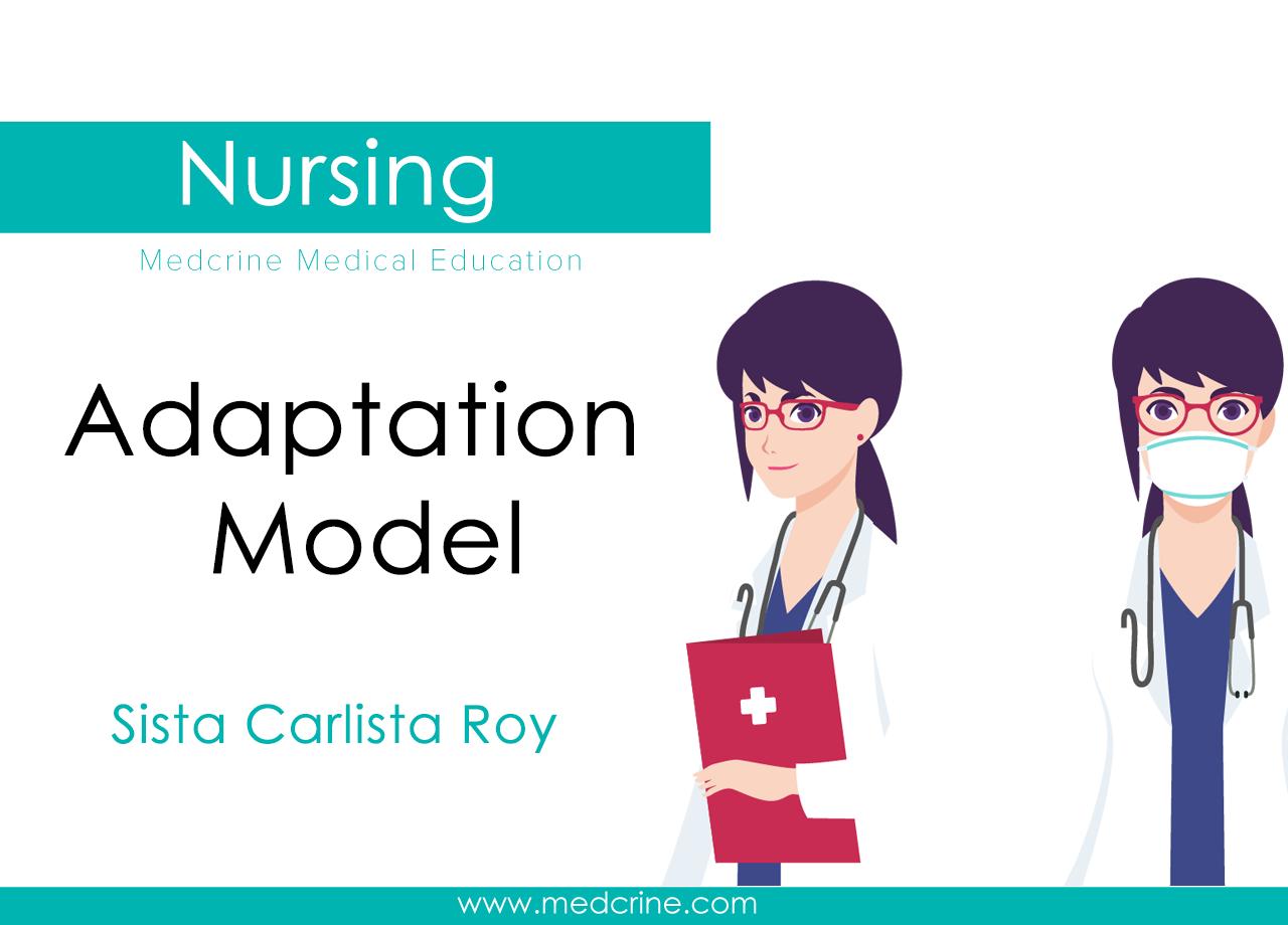 Sister Calista Roy - Adaptation Model