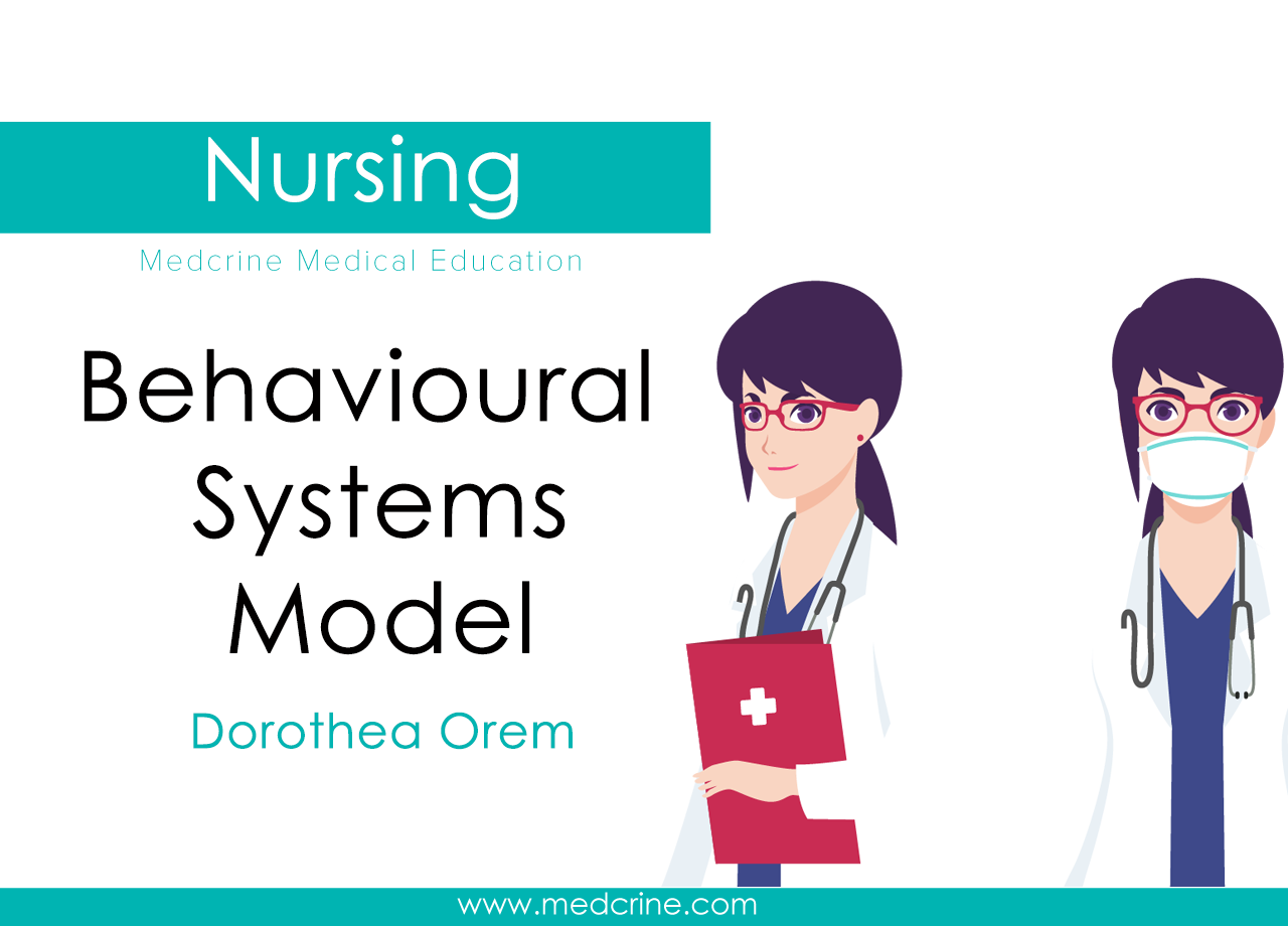 Dorothy Johnson-Behavioral Systems Model