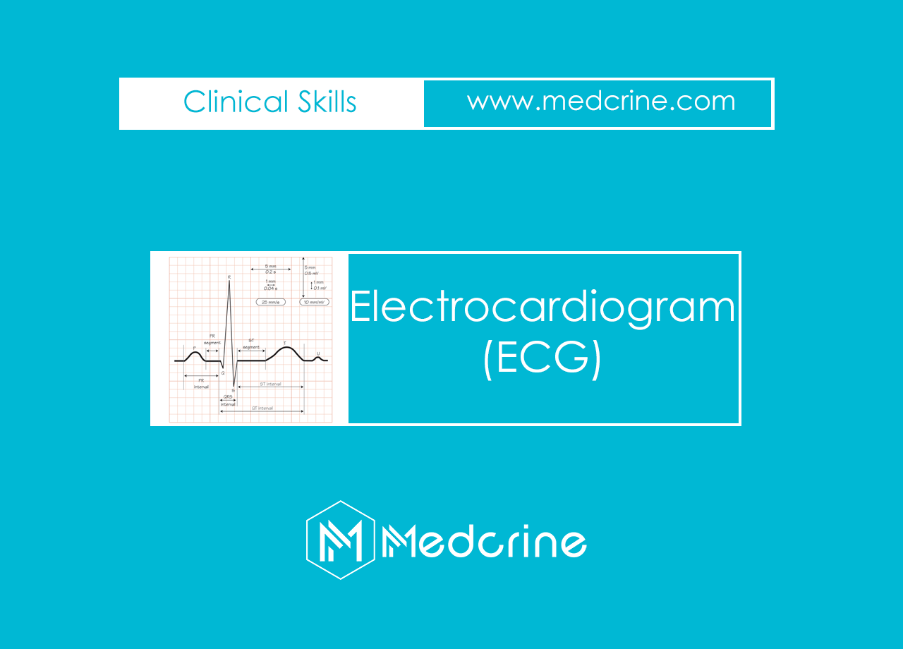 Electrocardiogram Physiology