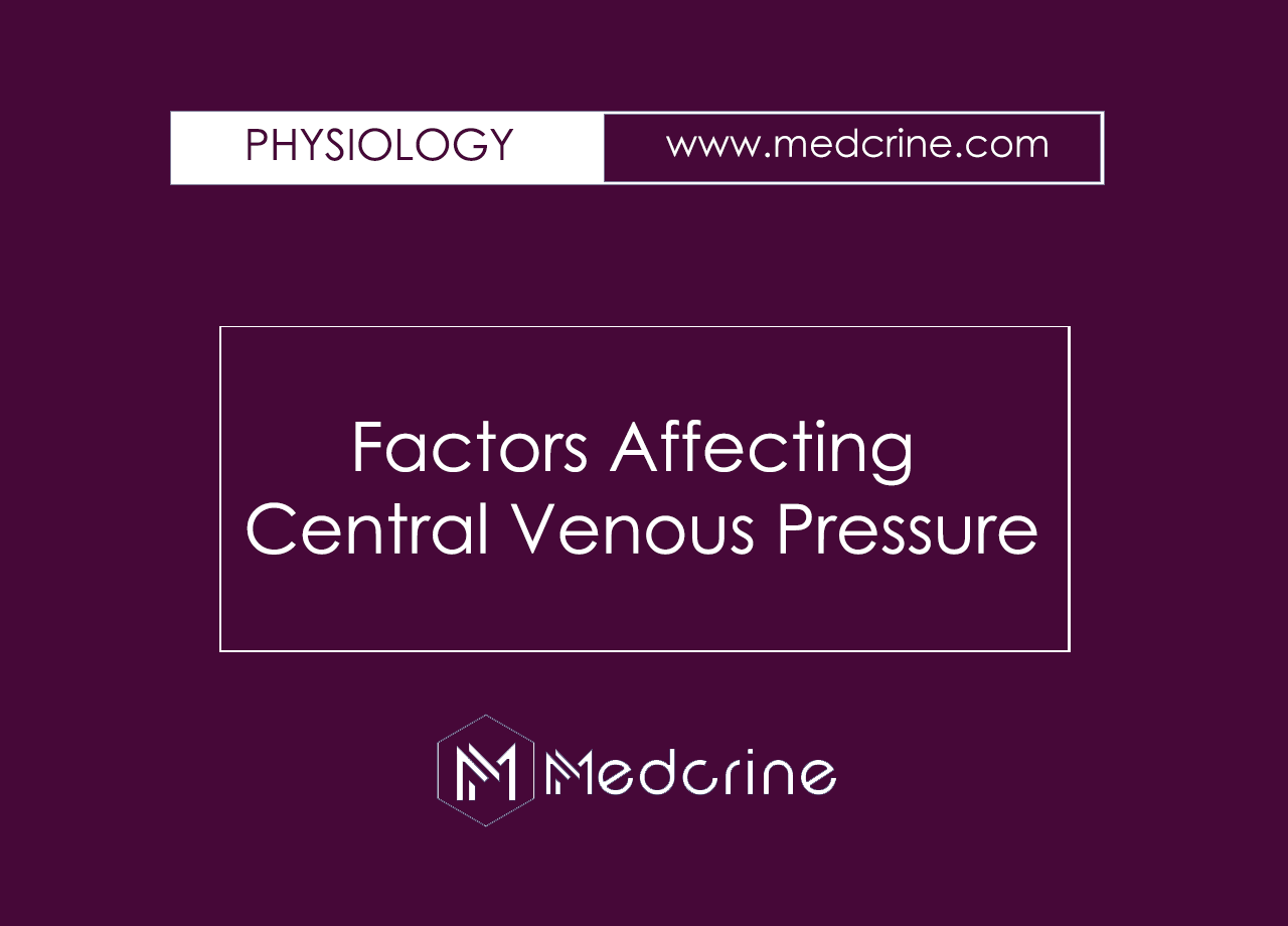 What are the factors affecting central venous pressure?