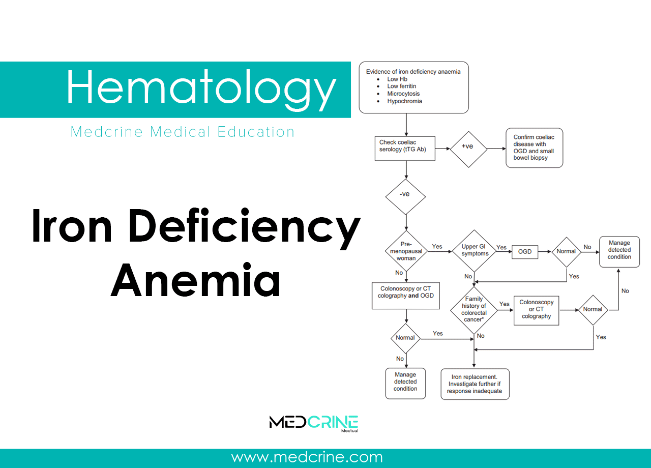 Iron Deficiency Anemia: Causes, Pathophysiology and clinical features