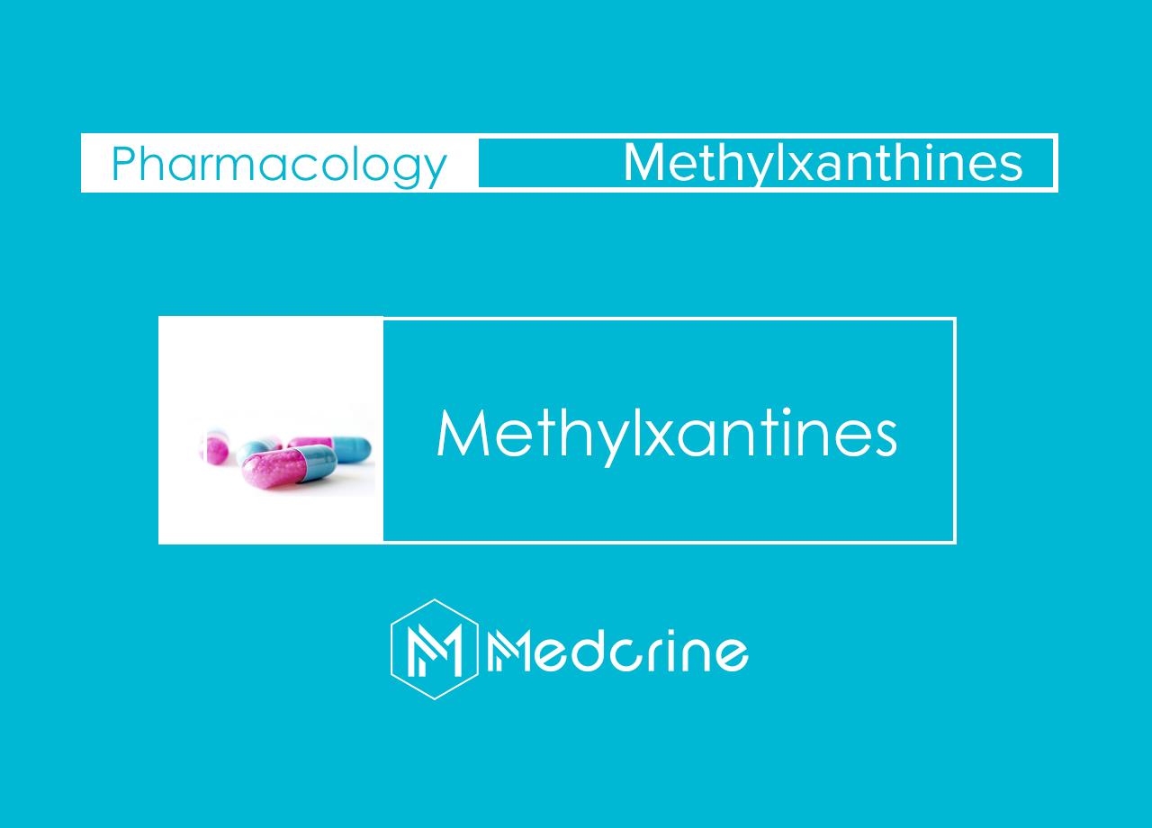 Methylxanthines: Caffeine Citrate, Aminophylline, Theophylline