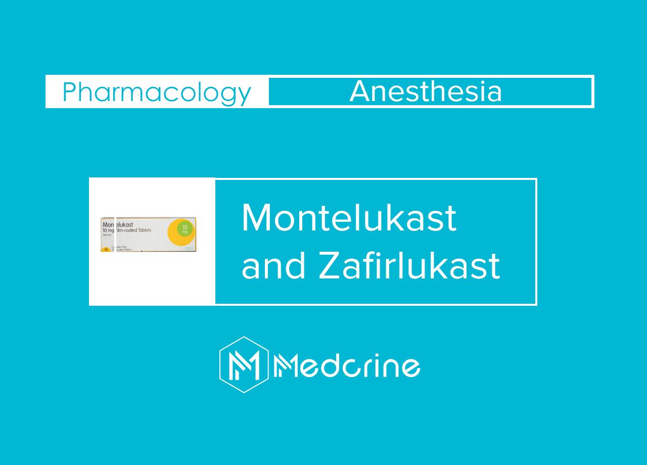 Montelukast and Zafirlukast