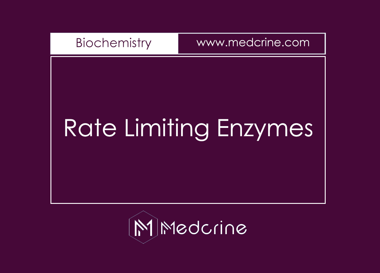 Rate Limiting Enzymes