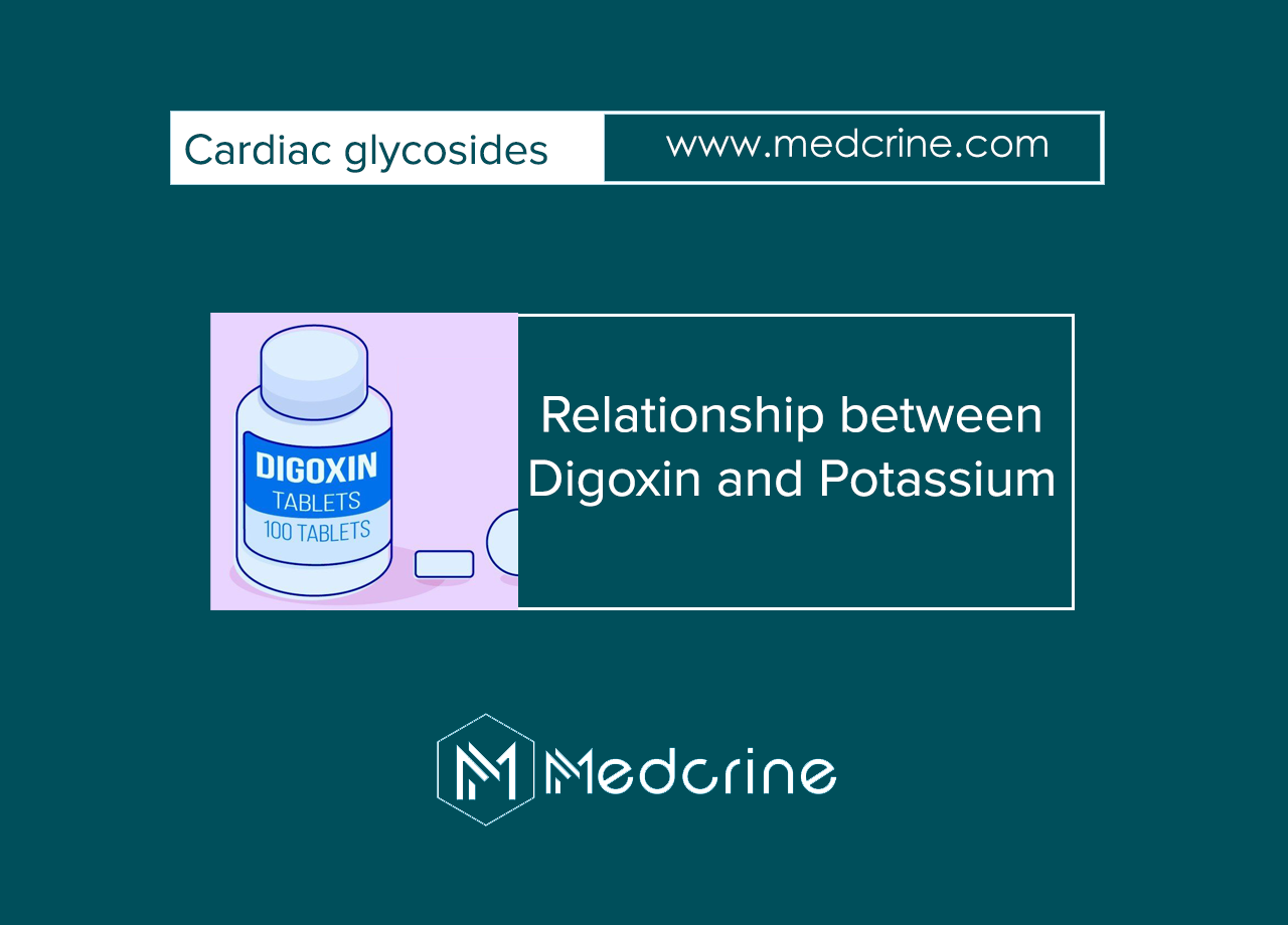 What is the relationship between Digoxin and potassium?