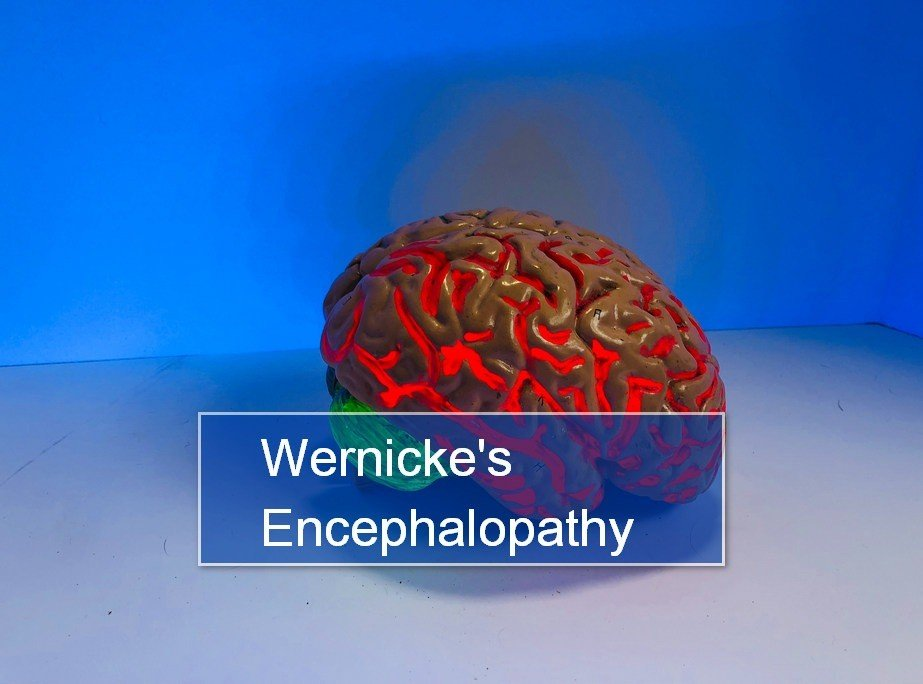 Wernicke's Encephalopathy (WE)